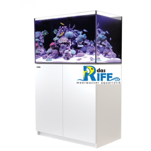 Red Sea REEFER™ 250 - Weiss