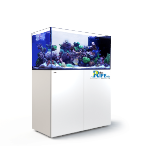 Red Sea REEFER™ Peninsula 500 - Weiss